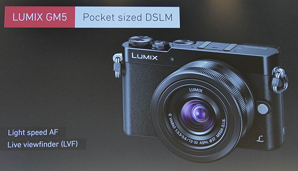 p13_LUMIX_GM5.jpg